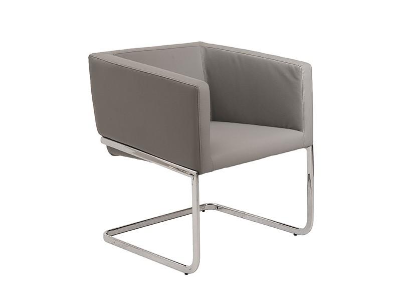 Ari Lounge Chair